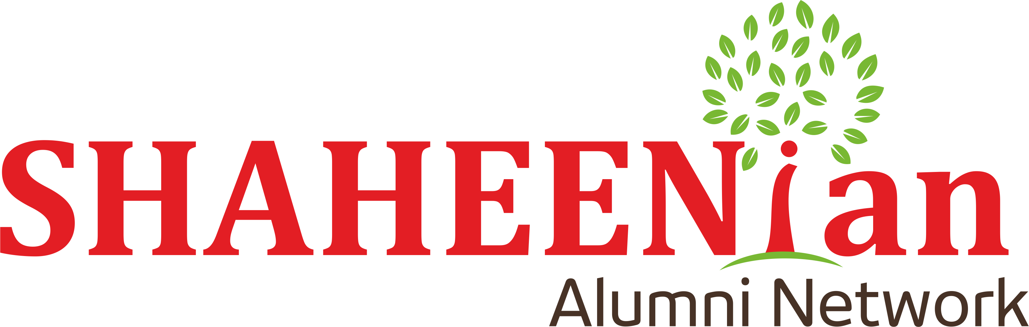 Shaheenian Logo Online Doctor
